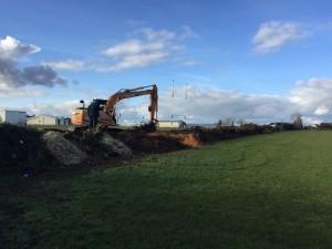 Hedge Removal Underway