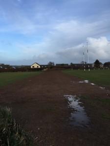 Hedge Removed & Ground Leveled